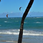 kiters in Cabarete